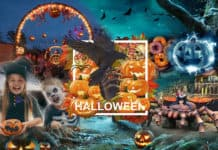 MK Themed Attractions Halloween-2020 catalogue