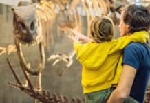 Dad and boy watching dinosaur skeleton