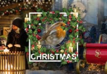 MK Themed Attractions creates new Christmas catalogue