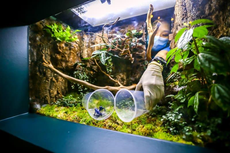 sea aquarium rws