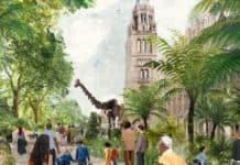 NHM gets planning permission to transform gardens in Urban Nature Project
