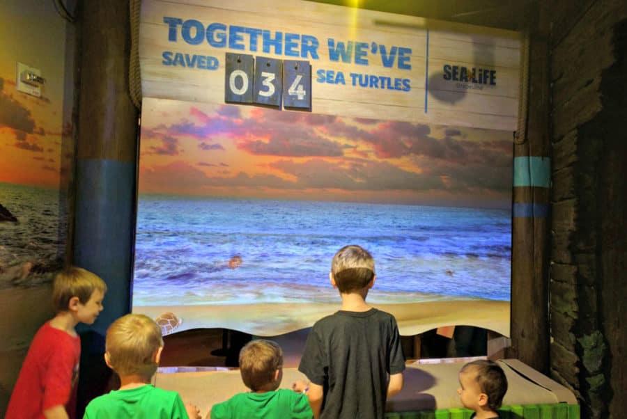 Children at the new sealife exhibit