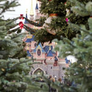 The castle at christmas tracy eck