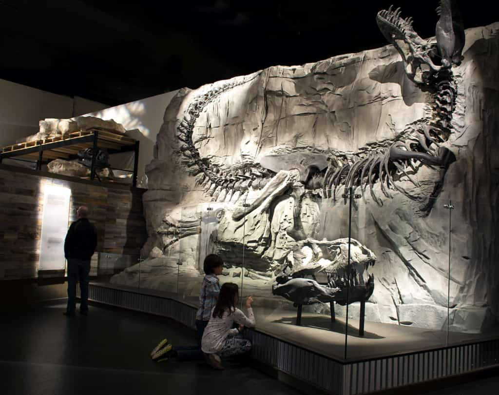 Royal Tyrrell Museum Foundation exhibit