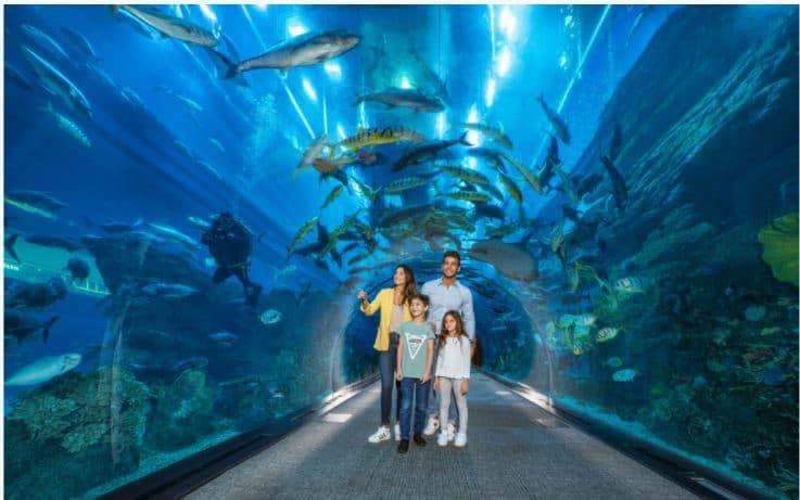 family visiting dubai aquarium Zeina Dagher