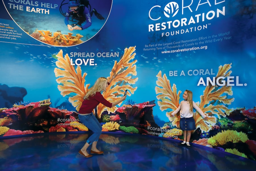 Coral Angel photo op Aquarium at the Boardwalk