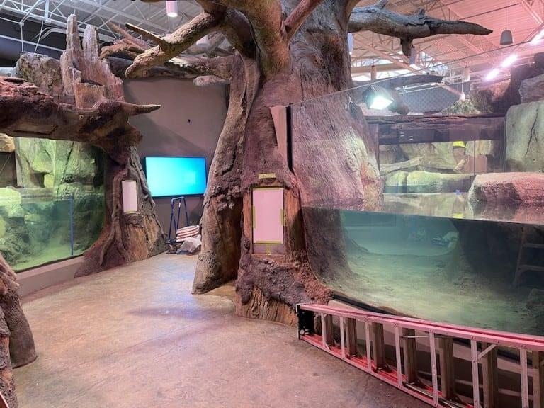 Knoxville Zoo ARC Longhorn Organics