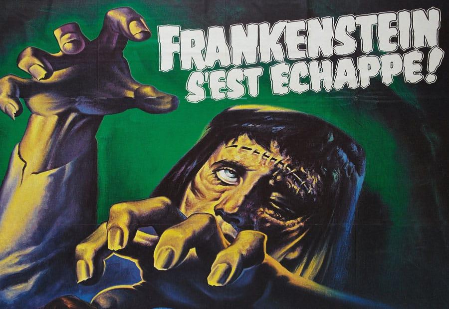 Frankenstein french poster