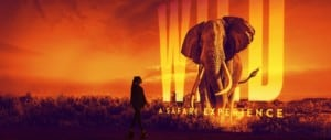 Illuminarium Wild Safari