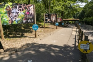Marwell Zoo - Re-opening