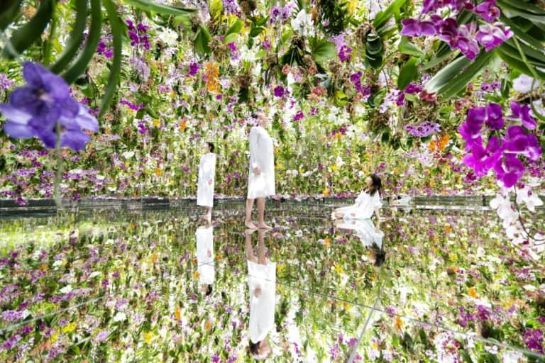 teamlab planets tokyo gardens