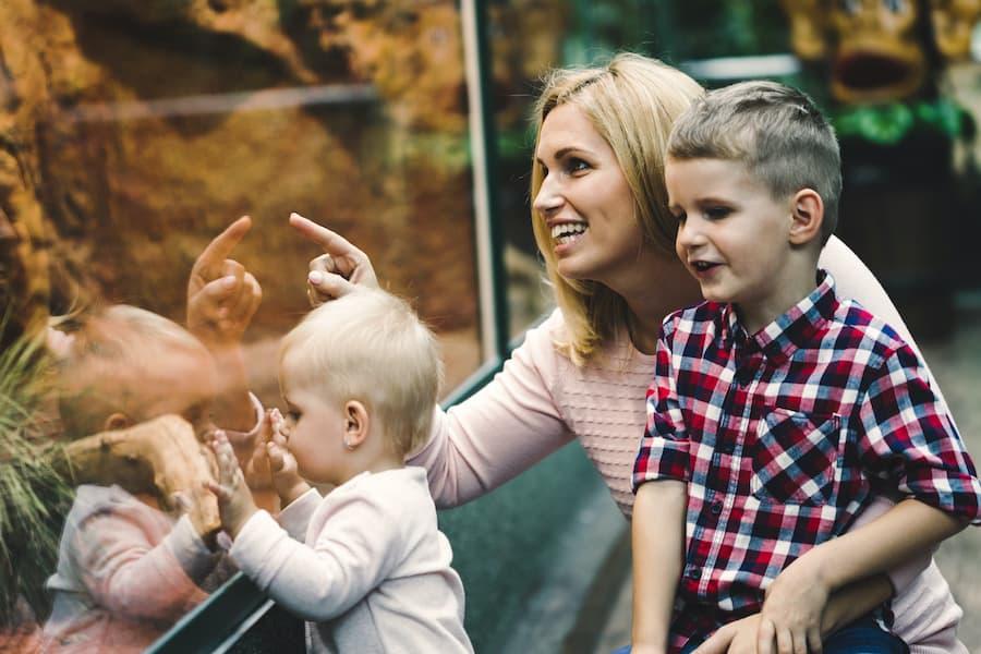 family-at-zoo