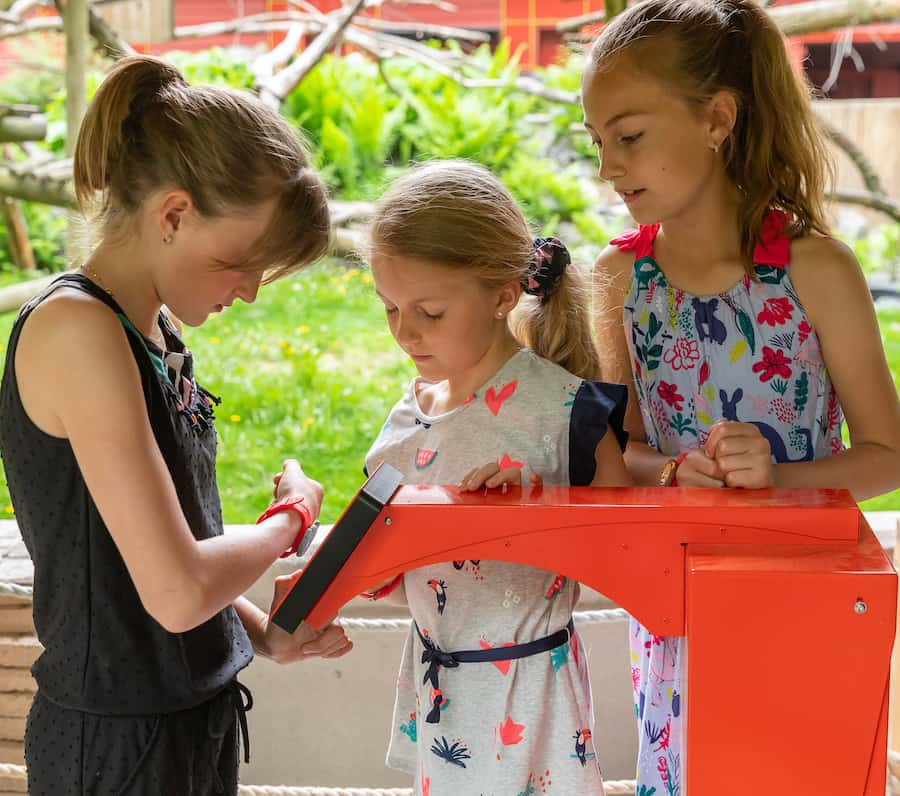 kids wearing experience + bracelet at Granby zoo